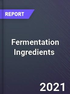 Fermentation Ingredients Market