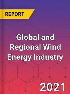 Global and Regional Wind Energy Industry