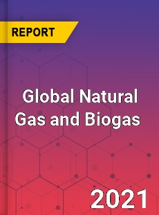 Global Natural Gas and Biogas Market